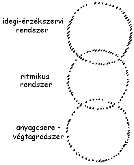 érzékszervi rendszerek látása)