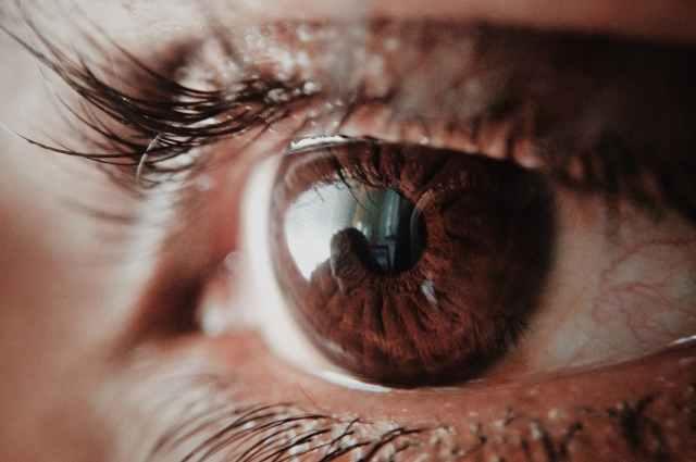 a látás szerepe az emberek életében