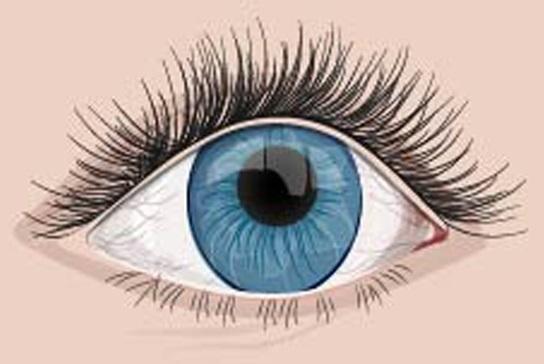 a szembetegségek látása és kezelése)