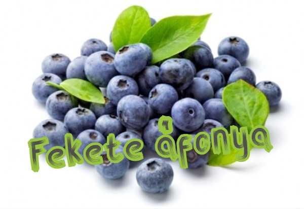 Fekete áfonya, nem csak a látás gyümölcse » VitakingShop webáruház