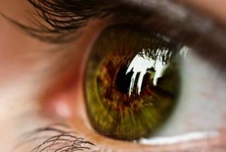 két szem látásélessége egyszerre)