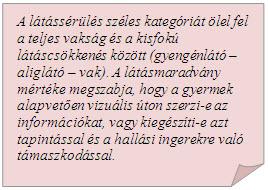 látássérülés milyen)