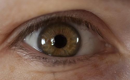 emberi látás megapixelek)