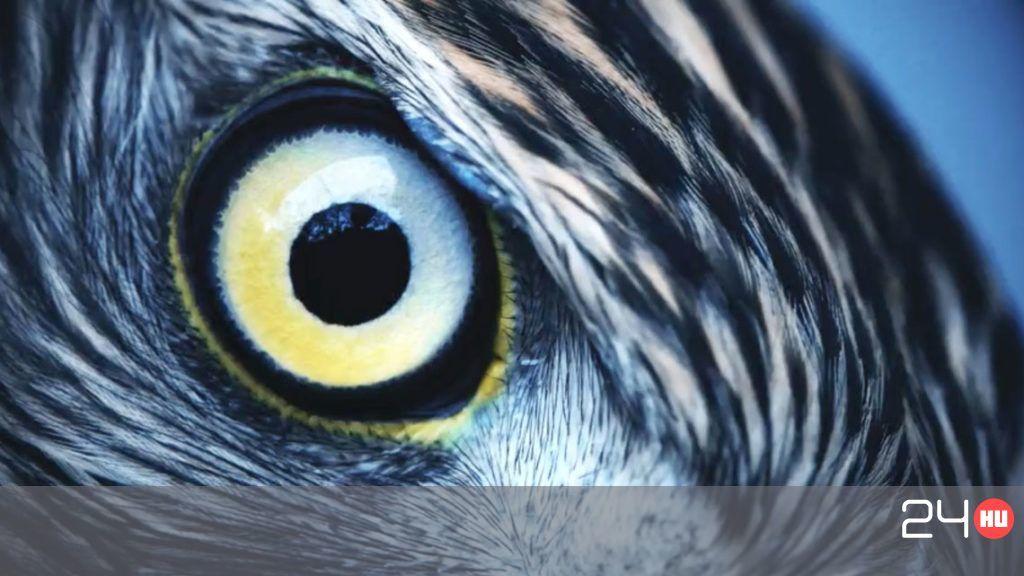 Mi is az a tökéletes látás?   Marie Claire