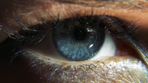 pupilla látás látvány)
