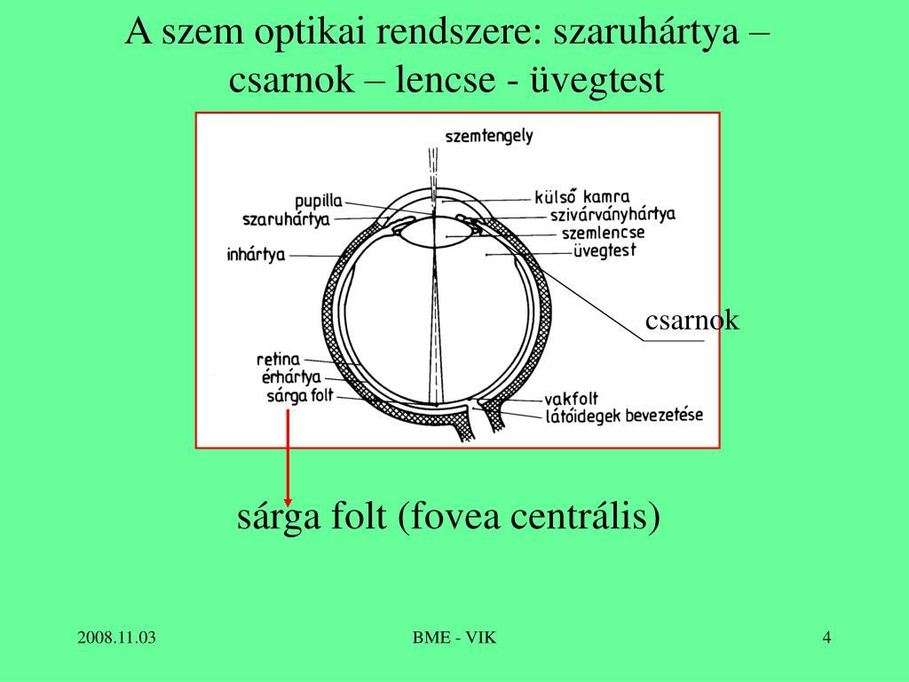 emberi látás 180 Maxley hogyan lehet helyreállítani a látást