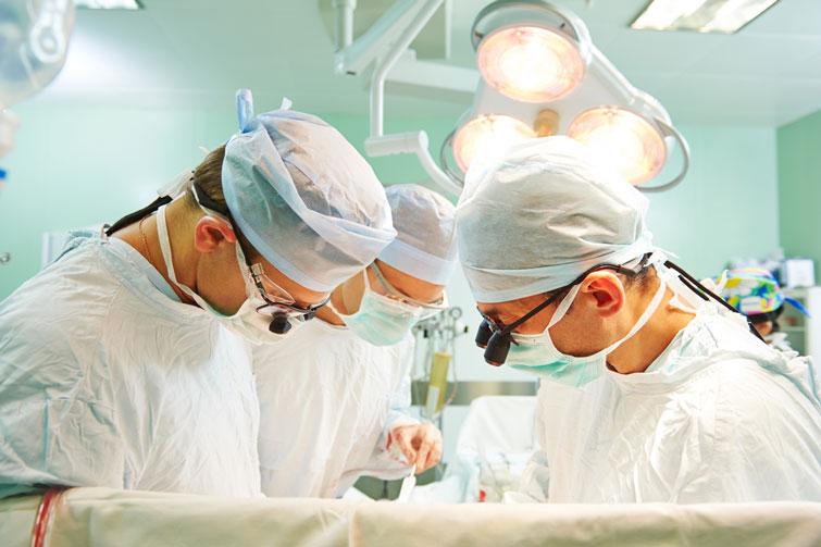 szervátültetés orvosi szempontból)
