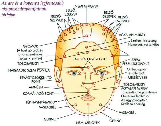 az akupunktúra gyógyítja a látást)