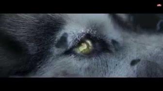 Tibeti látástechnika
