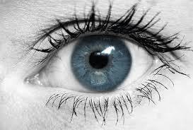 előadások a látáshoz
