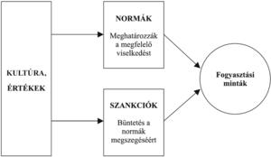 látási normák)