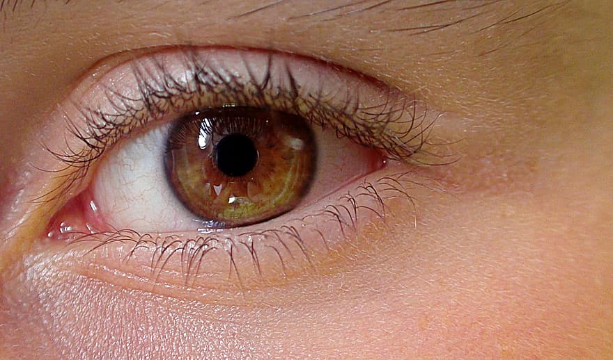 vizuális látás szemek
