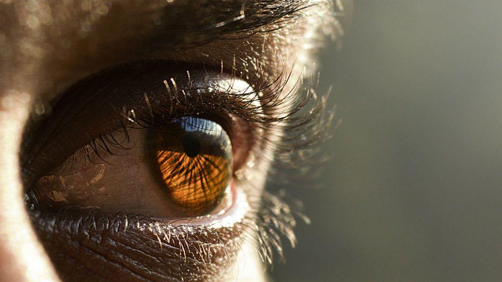 szaruhártya nélküli látás