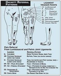 látás osteopath)