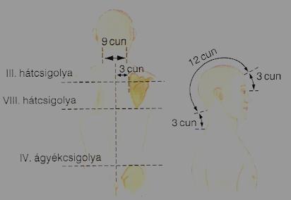az anyaméh javítja a látást)