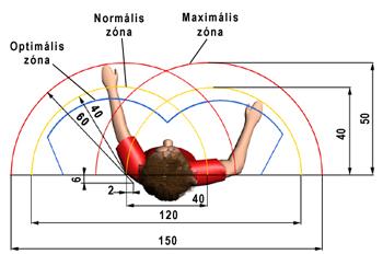A retina macula - Macula of retina - zonataxi.hu