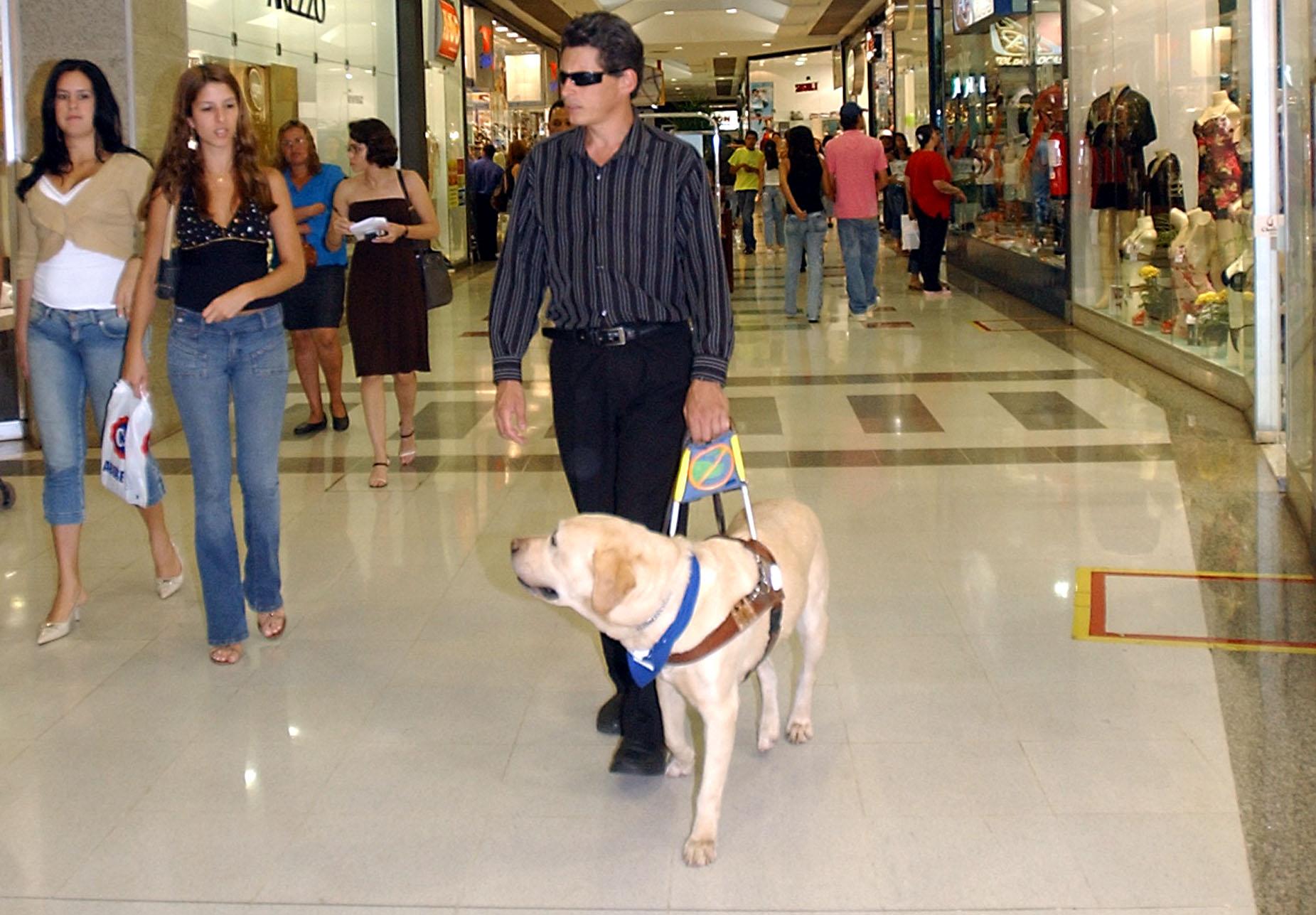 a látássérülés okai és következményei