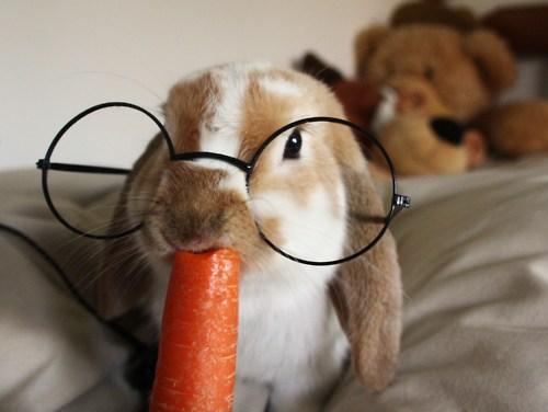 szemüveg állandóan látásélességet visel