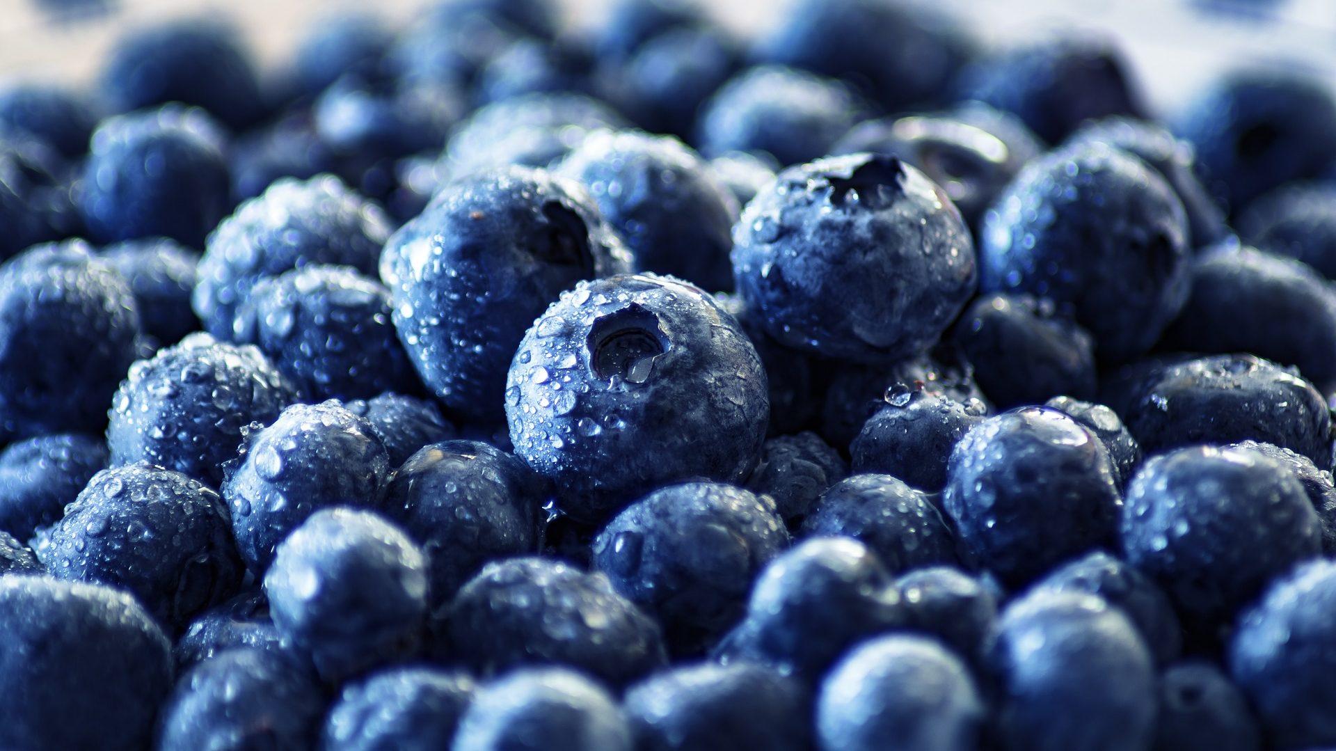 áfonya vitaminok a látáshoz