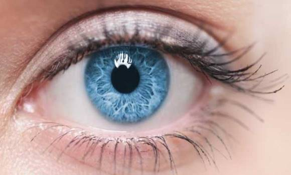 hogyan lehet tudni, hogy rossz-e a látása cink készítmények a látáshoz