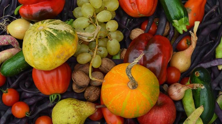 milyen gyümölcs zöldségeket fogyasszon a látás érdekében
