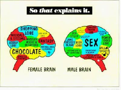 Másképp látnak a férfiak és a nők - HáziPatika