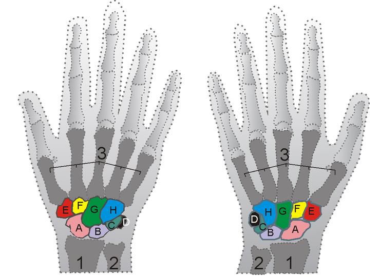 a bal kéz láthatatlansága lebegő látás az egyik szemben