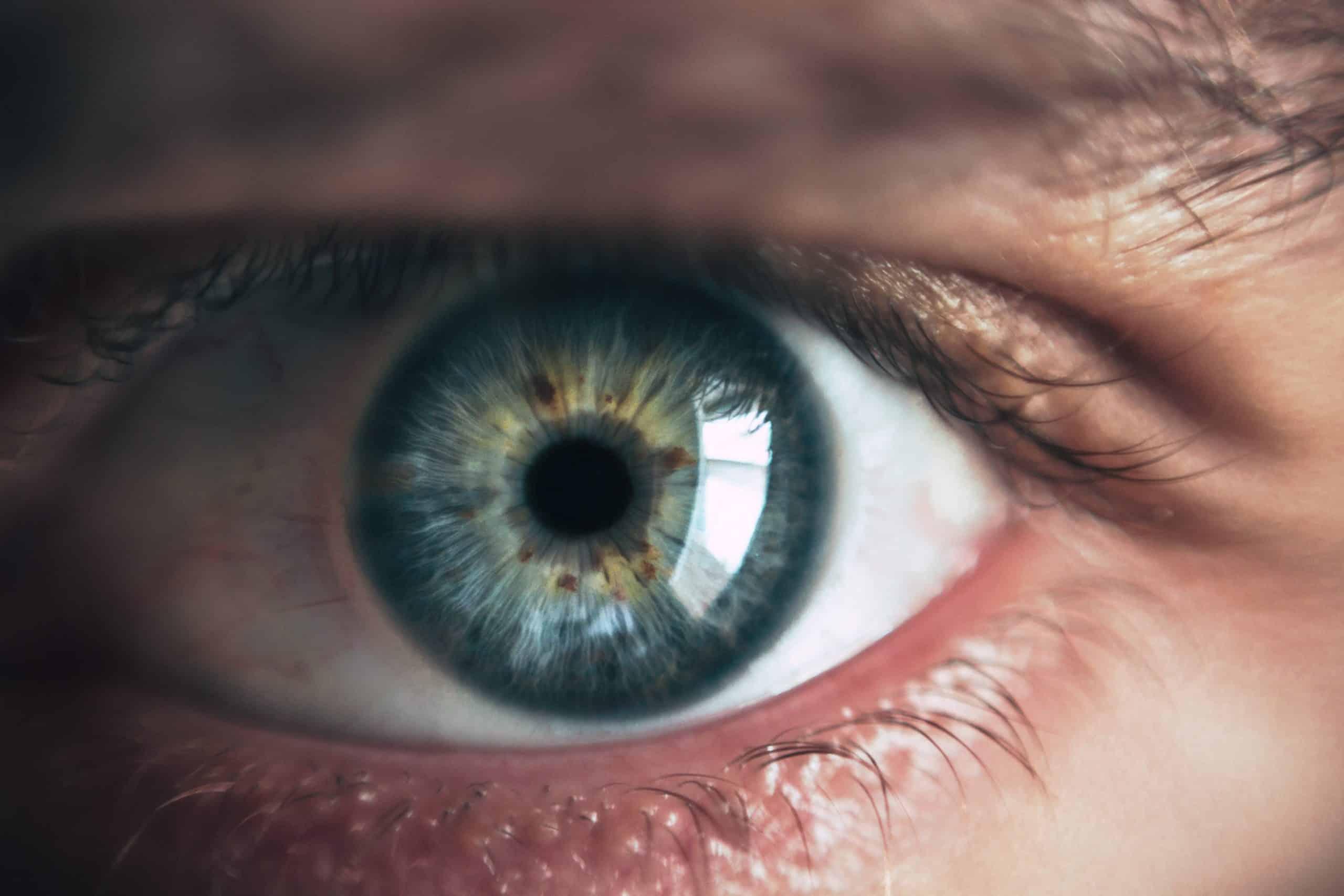 a látásélesség és a szemfenék vizsgálata