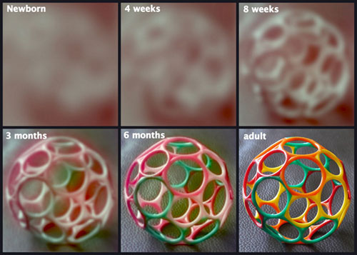 Nézze, pár másodperc alatt lepereg előttünk: így fejlődik a gyerekek látása 1 éves korig