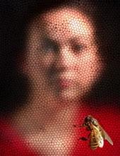 a méhek látványa és szeme a látás mínusz a távollátás