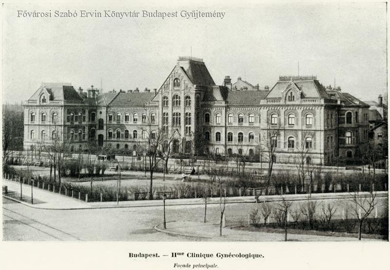 Orvoskereső | Debreceni Egyetem