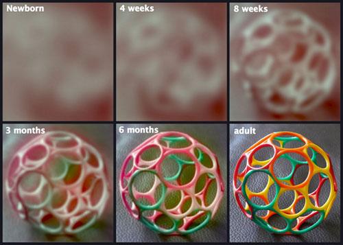 Csecsemő látása | Csecsemő fejlődése