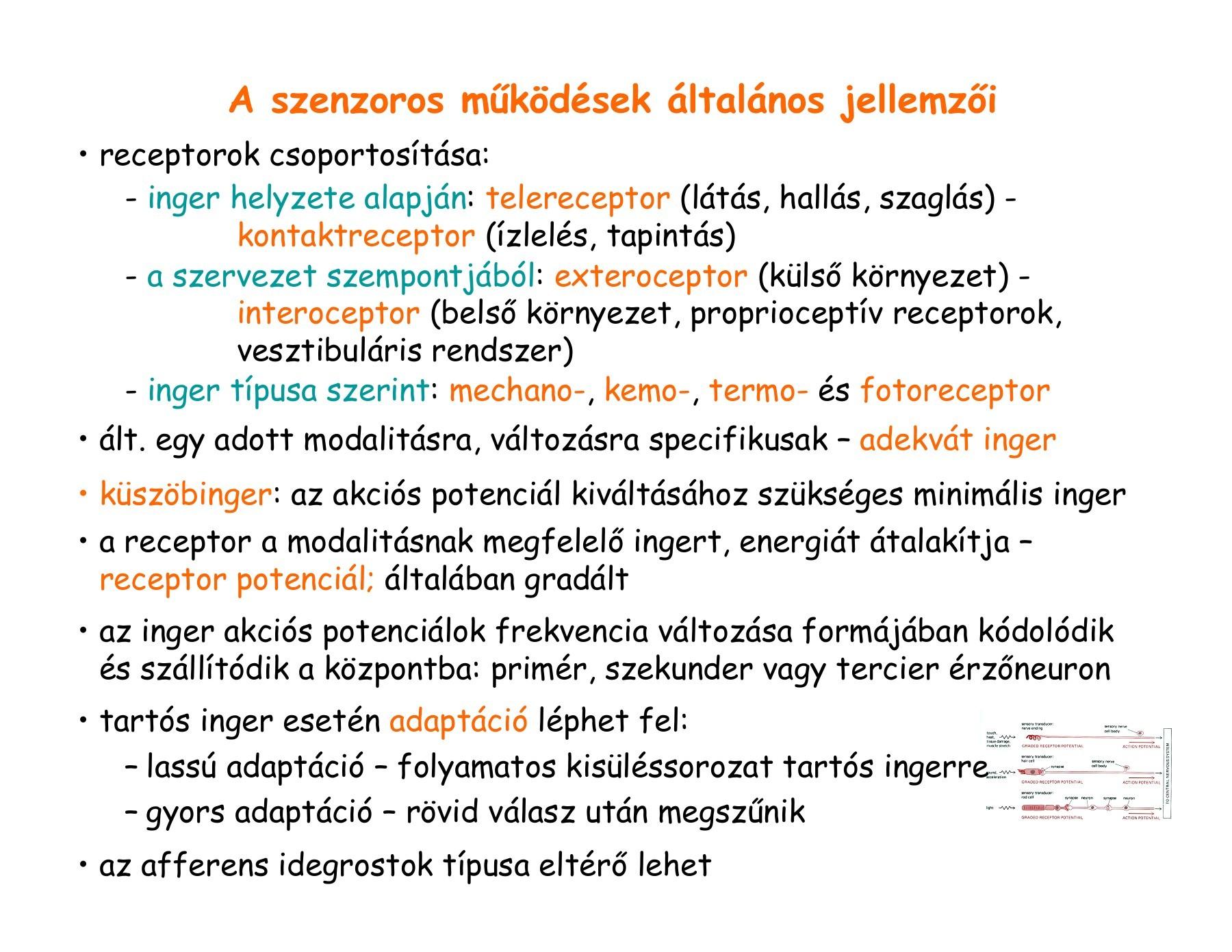 Látás 1 5 myopia table