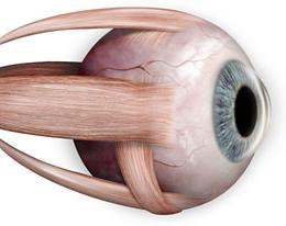 szokatlan látásbetegségek