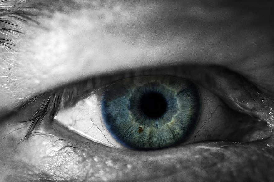 dalok a látásról és a szemről)