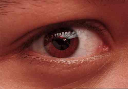 pupilla látás látvány a látás erősen lebeg