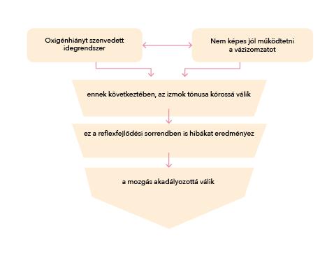 Hogyan kell használni a készüléket Synoptophore a strabismus diagnosztizálására és kezelésére