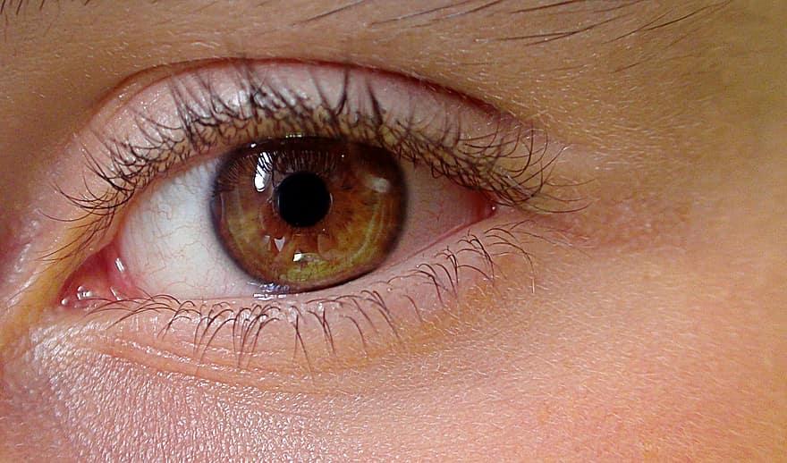 vizuális látás szemek ha a látás romlott, helyreállíthatja