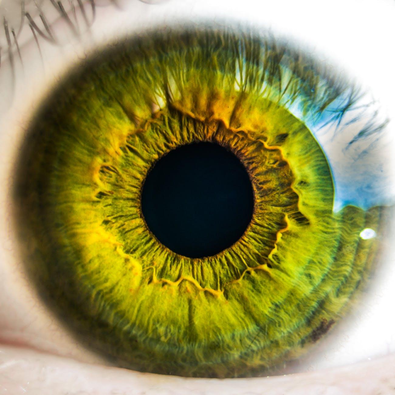 látás műtét után 100%)