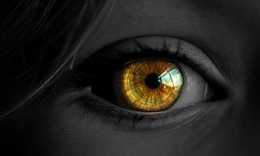 látomás miért két szem)