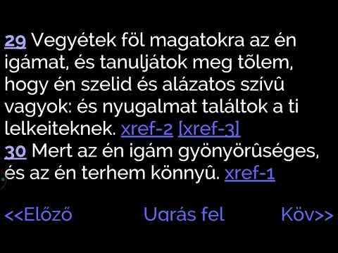 áfonya és látáskezelés)