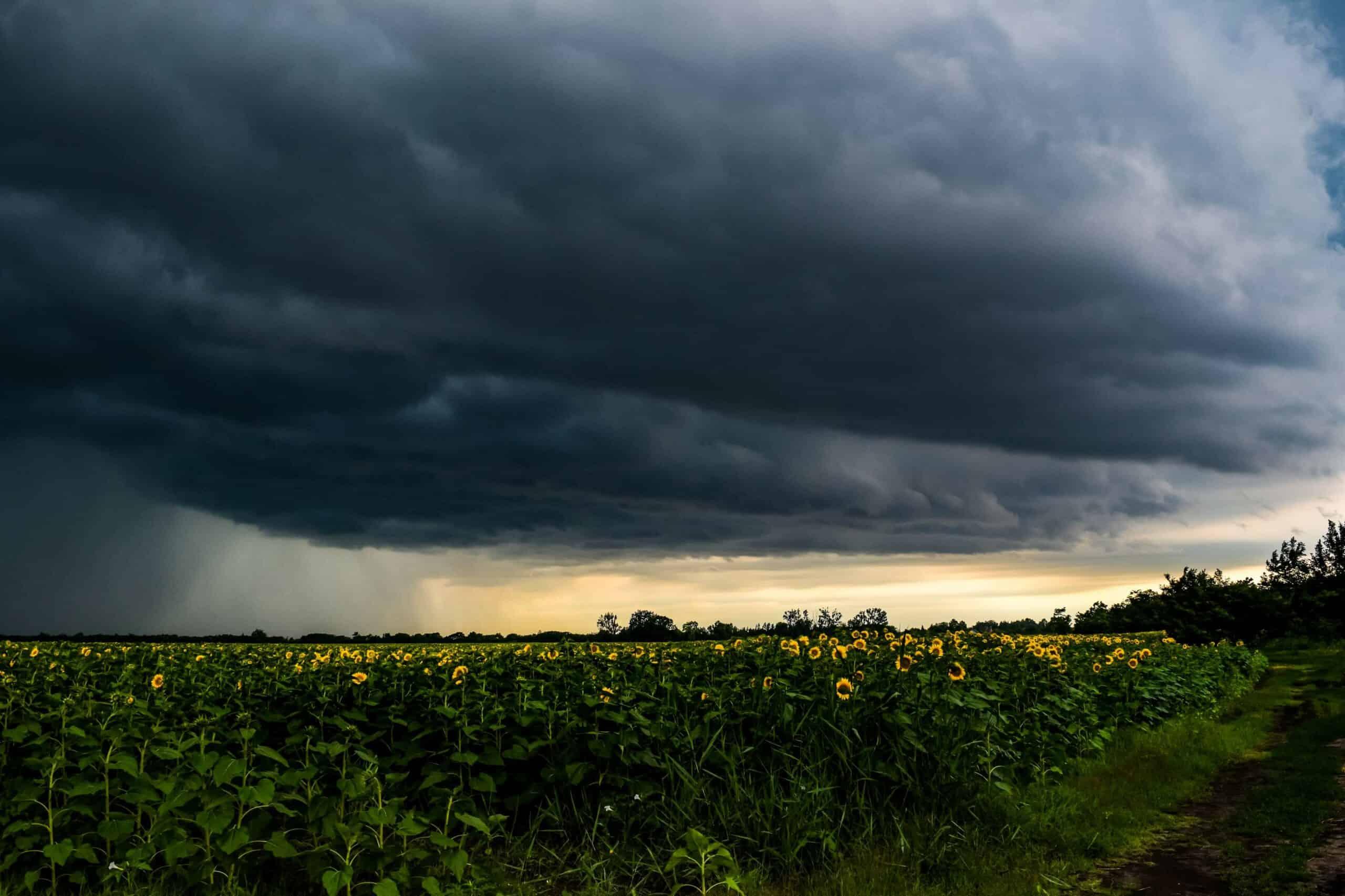 Mit csináljunk vihar és villámlás esetén otthon és a szabadban?