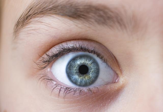 A látás részletesen