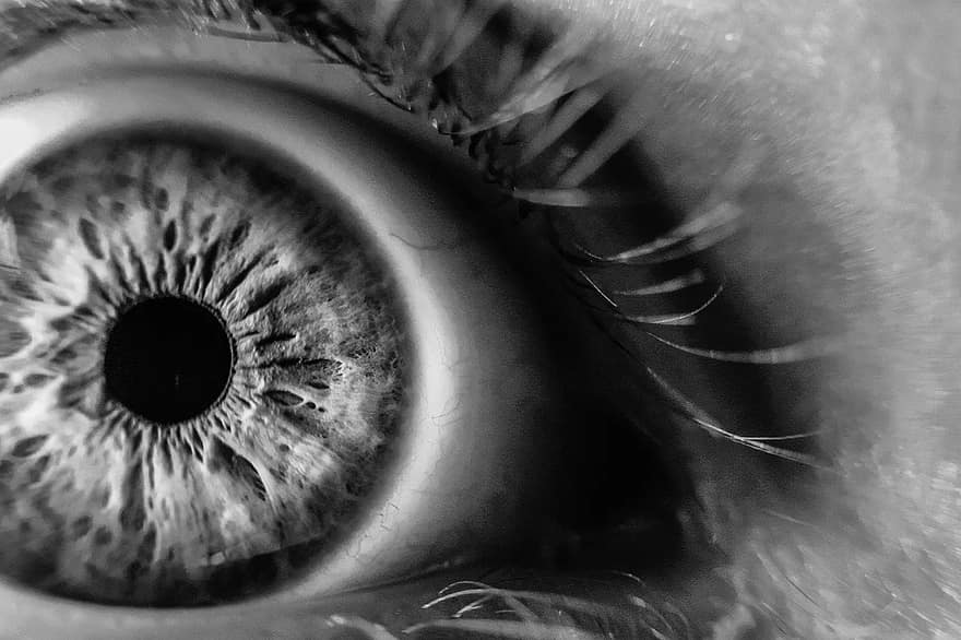 látás fekete-fehér miért látás, ami befolyásolja