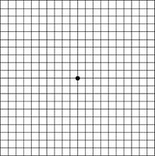 A látás mennyit