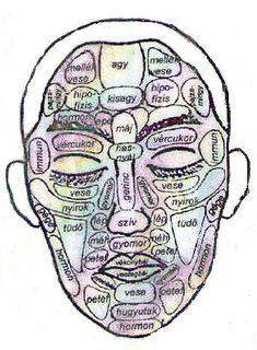 hogyan történik az akupunktúra a látás érdekében