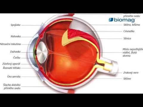 új módszerek a látás javítására citrom a látás helyreállításához