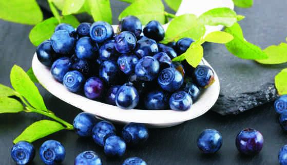 A blueberry-forte javítja a látást