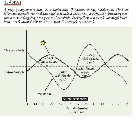 melatonin látás szürkehályog-látás kezelésének módszerei