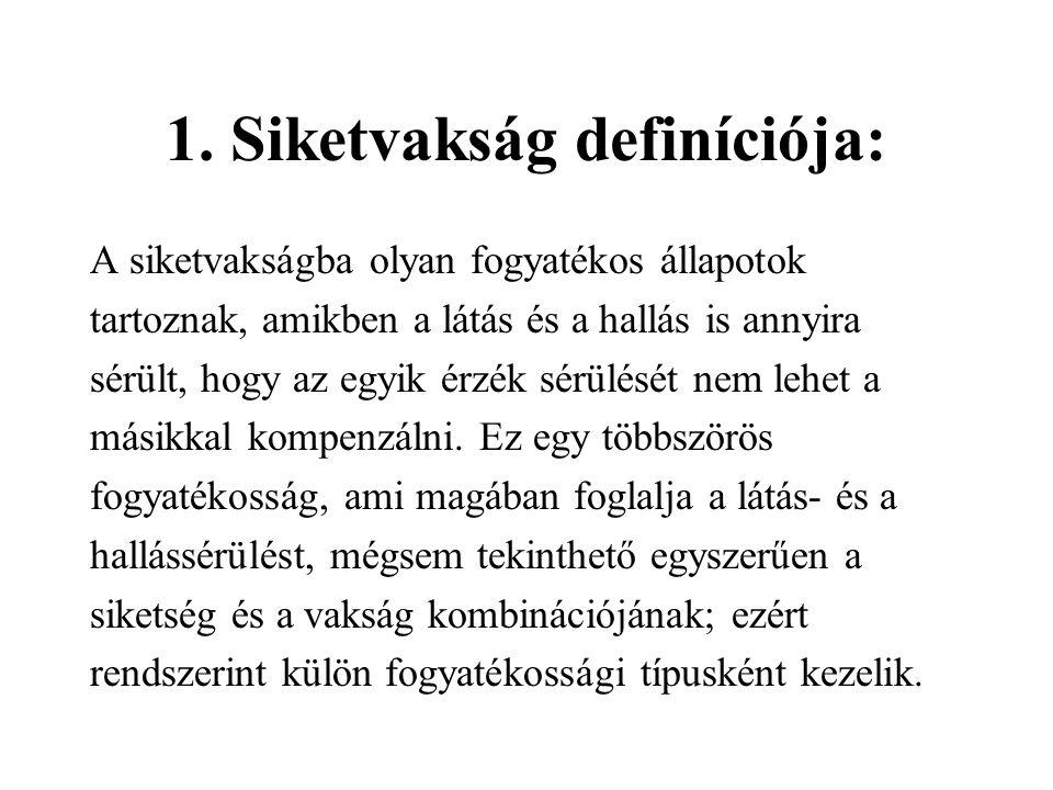 sérült látás)